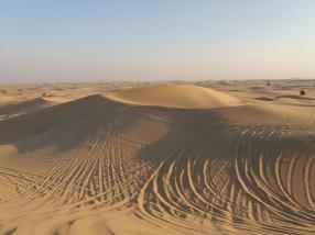 Wir rocken die Wüste